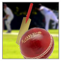 cricket spielregeln